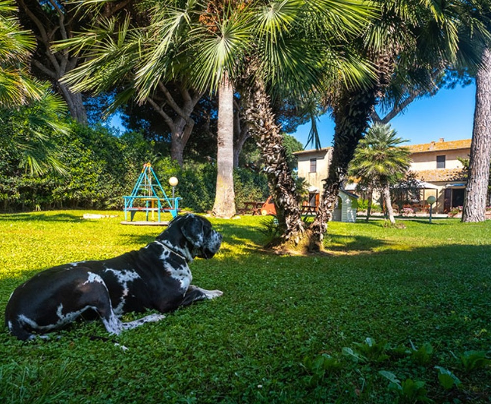 Residence Casale Voltoncino Pet Friendly